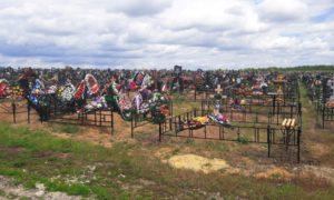 Смоленская область кладбище