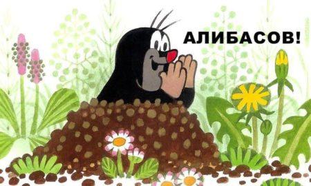 Бари Алибасов Крот